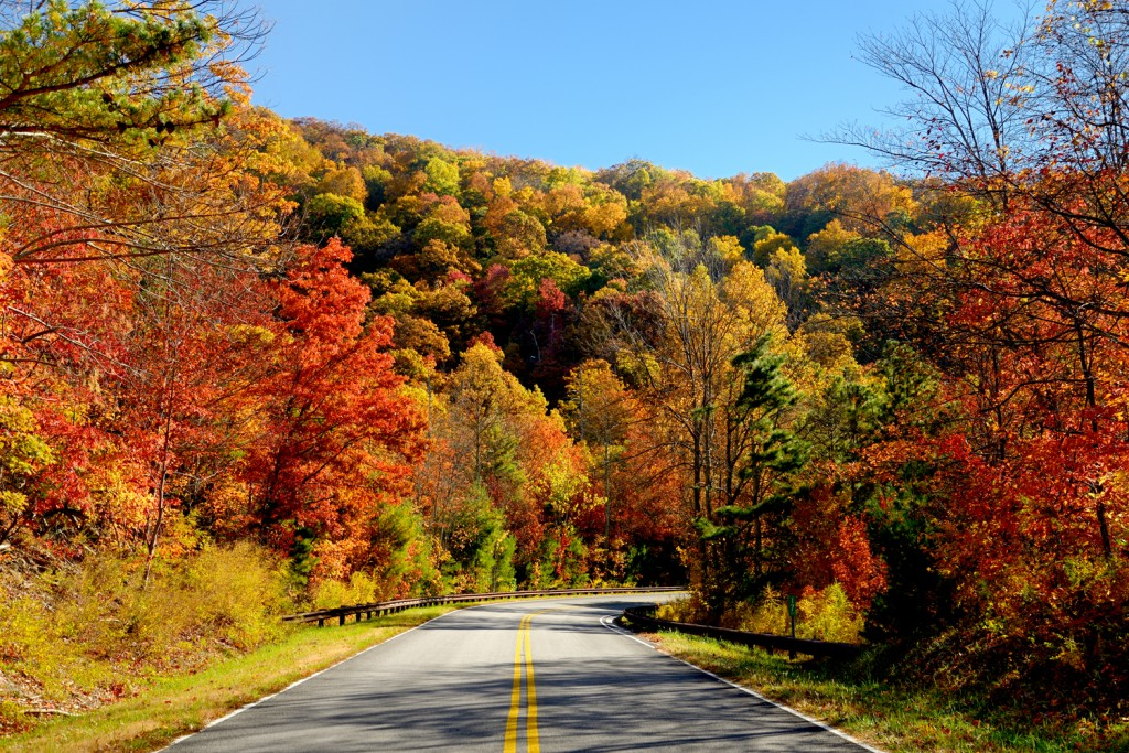 Coconut Club Vacations Explores the Cherohala Skyway