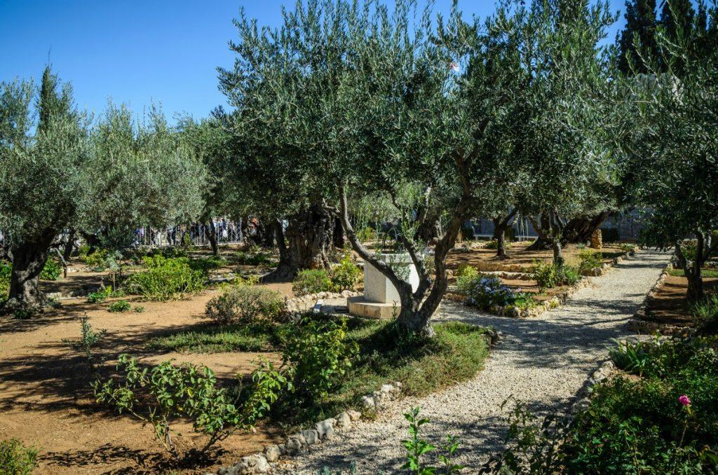The Garden of Gethsemane, Tuscon, AZ